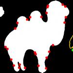 camel-curve